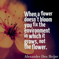 When a flower doesn't bloom you fix the environment in which it grows, not the flower. ~~Alexander Den Heijer