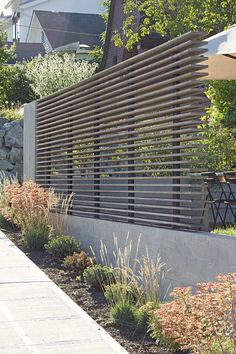 Privacy with air flow by SHED Architecture & Design - Portage Bay Yardscape / SHED Architecture & Design  /   Modern landscape design  /   Detail