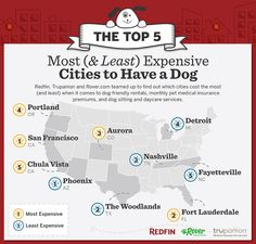 We put our snouts to work and sniffed out the most (& least) expensive cities to have a dog!