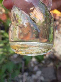 Verifica daca este miere naturala. testul cu apa
