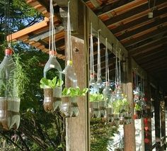Garden How often do you reuse plastic containers? Be your own recycling program and use them for things like herb gardens!How often do you reuse plastic containers? Be your own recycling program and use them for things like herb gardens! Reuse Plastic Containers, Eco Deco, Plants In Bottles, Recycled Garden, Recycled Planters, Succulent Planters, Diy Planters, Succulents Garden, Garden Plants