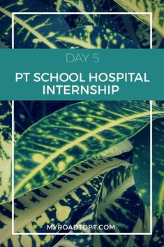 "PT school hospital internship: ""I was able to see many areas of the facility, interact with a variety of patients, and observe different physical therapists and other professions."" 