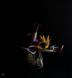With Flowers Only - Ikebana Sogetsu e #vaso di Luca Ramacciotti.#ikebana #sogetsu