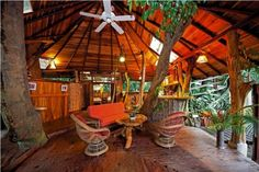 I want to stay in a Tree-house hotel!!