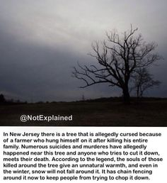 The Devil's Tree, New Jersey.although this isn't a creature or anything fantasy like i still thought it would be kinda important and nice for my fellow pinners to know this...and yes this tree is real and still standing till this day