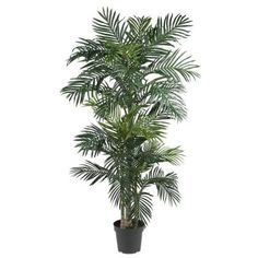 Nearly Natural 6-1/2 ft. Golden Cane Palm Silk Tree-5289 - The Home Depot