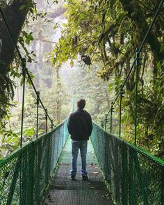 Is crossing hanging bridges in Monteverde's cloud forest still on your 🌿😍🍃 Photo credits: Stuff To Do, Things To Do, Monteverde, Brooklyn Bridge, Bridges, Photo Credit, Clouds, Travel, Instagram