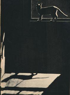 Sam by Edward W. Quigley, 1898-1977