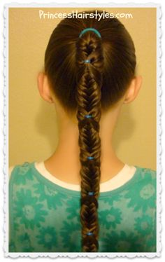 Fishtail Wrap Braid Ponytail from Princess Hairstyles