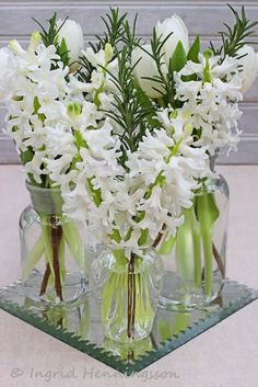 FLOWERS by ingrid & titti - White Flowers for the New Year © Ingrid Henningsson/Of Spring and Summer - White tulips, hyacinths and rosemary.