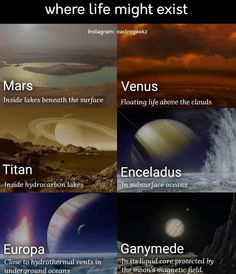 True Interesting Facts, Intresting Facts, Astronomy Facts, Space And Astronomy, Wow Facts, Wtf Fun Facts, Marie Curie, Facts About Universe, Cool Science Facts