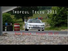 Trofeul Teliu 2011 - Radu Necula - Peugeot 106 GTI + onboard