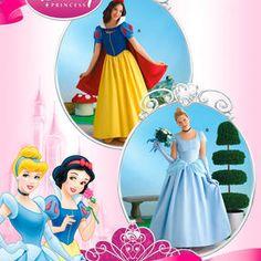 Disney Princess Costumes For Misses