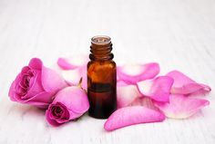 Discover the many uses and benefits of rose essential oil – one of the most luxurious and sought-after essential oils on the market.
