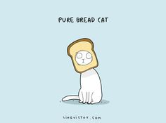 8 Cat Puns That Will Make Your Day - We Love Cats and Kittens