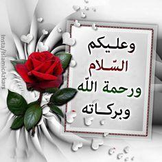 Salam Image, Hi Images, Muslim Greeting, Assalamualaikum Image, Doa Islam, Islamic Dua, Islamic Love Quotes, Good Morning Images, Hadith