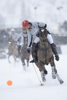 Polo on Snow