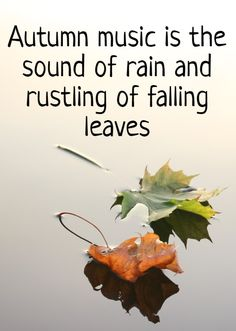 Autumn music is the sound of rain and rustling of falling leaves Autumn Quotes Autumn Rain, Autumn Cozy, Autumn Leaves, Autumn Music, Leaf Quotes, Rain Quotes, Music Quotes, Weather Quotes, Sound Of Rain