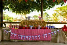 Farm party table set up