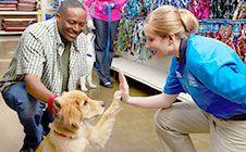 10 Best PetSmart Dog Training images in 2015 | Petsmart dog