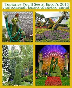 Here's a sneak peek of some of the amazing topiaries to be seen at the 2015 International Flower and Garden Festival taking pace at Epcot until May 17th!