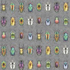 Guildford Beetle Jewels x Wallpaper Mural Ebern Designs Colour: Grey/Multi Tile Wallpaper, Wallpaper Samples, Animal Wallpaper, Wallpaper Roll, Magnolia Wallpaper, Beetle Insect, Tin Tiles, Jewel Colors, Wall Colours