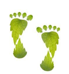 groene voeten