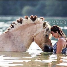 Fan of Horses - the one stop shop for horse fanatics 😍🐴😍How do you like my hair? Big Horses, Cute Horses, Pretty Horses, Beautiful Horses, Animals Beautiful, Cute Animals, Horse Mane Braids, Horse Braiding, Horse Clipping