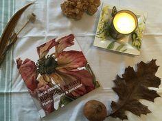 Sarah J. Loecker : 1 of 3 new art books in January- Botanical artistr. Sarah J, Seed Pods, Book Reviews, Botanical Illustration, Christmas Presents, Digital Photography, New Art, Book Art, Floral Wreath