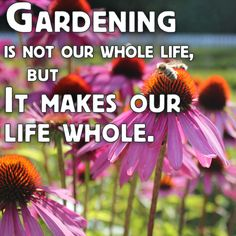 """Gardening is not our whole life, but it makes our life whole"" - So true :)"