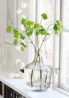 ¿Quieres Color en Casa? Flores de Primavera