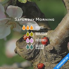 Saturday Morning - Essential Oil Diffuser Blend