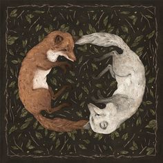 """victoriousvocabulary:  VULPINE[adjective]1. of or resembling a fox.2. cunning or crafty.Etymology: from Latin vulp(ēs), """"fox"""".[Jessica Roux]"""