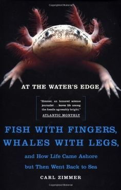 At the Water's Edge : Fish with Fingers, Whales with Legs, and How Life Came Ashore but Then Went Back to Sea by Carl Zimmer