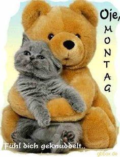 Guten Morgen mein Hase  ich wünsche dir einen guten Start in die neue Woche ich liebe dich