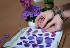 I love this part of the work process pressed flowers flower press dried plants