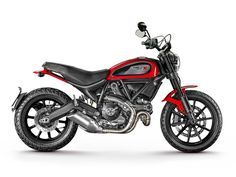 Ducati Scrambler Icon - Customized