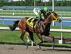 Wildcat Red to Haskell After Quality Road Win. 6/28/14