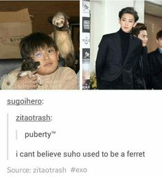 puhahaha EXO // Puberty hit Chanyeol like a truck ... and Suho like evolution