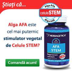 Stimuleaza productia de Celule Stem, inhiba formarea si dezvoltarea formatiunilor tumorale, antioxidant