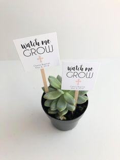 25 Custom Mini Succulent Watch Me Grow Baptism Favor Plant