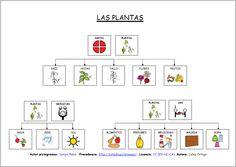 MATERIALES - Las plantas: mapas conceptuales  Mapas conceptuales para trabajar… Teachers Aide, Parts Of A Flower, Science And Nature, Trees To Plant, Homeschool, Spanish, Language, Education, Php