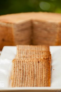 Spekkoek - Thousand Layer Cake (Lapis Legit) Spekkoek is a Dutch-Indonesian layered cake. Also known as spekkuk and kue lapis legit or 'Thousand Layer Cake' due to the many layers the cake is made. Pastry Recipes, Baking Recipes, Dutch Recipes, Bread Recipes, Sweet Recipes, Healthy Recipes, Thousand Layer Cake, Lapis Legit, Bakers Gonna Bake