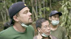 Leonardo DiCaprio es protagonista y coproductor del documental. http://www.rtve.es/noticias/20161102/before-the-flood-documental-leonardo-dicaprio-sobre-cambio-climatico-gratis-youtube/1436507.shtml