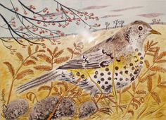 Emily Sutton, bird, nature, drawing, country, print, art, illustration, colour