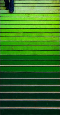 Escalier plus vert que nature. World Of Color, Color Of Life, Color Of The Year, Croscill Bedding, Fresco, Painted Stairs, Pantone Color, Emerald Green, Emerald Colour