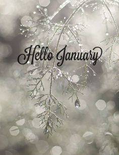 Hello January Images, Pictures, Quotes, and Pics