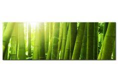 Vedi il quadro The bamboos e altre decorazioni murali nella galleria di bimago - quadri dipinti a mano, quadri trittici, reproduzioni e foto su tela.