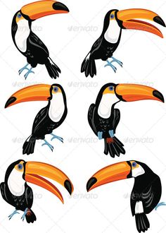 Realistic Graphic DOWNLOAD (.ai, .psd) :: http://jquery-css.de/pinterest-itmid-1007323427i.html ... Set of Toucans ...  animal, beak, bird, black, cartoon, colorful, exotic, fun, jungle, toucan, tropical, wild, yellow  ... Realistic Photo Graphic Print Obejct Business Web Elements Illustration Design Templates ... DOWNLOAD :: http://jquery-css.de/pinterest-itmid-1007323427i.html