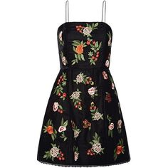 Alice + Olivia Launa lace-trimmed embroidered velvet mini dress (1960 TND) ❤ liked on Polyvore featuring dresses, vestidos, black, fit and flare cocktail dress, velvet fit and flare dress, flower embroidered dress, velvet dress and short dresses